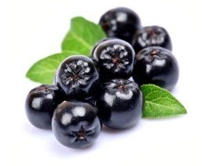 Aronia/Chokeberry