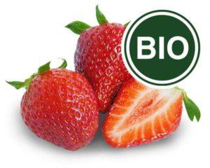Erdbeere Bio