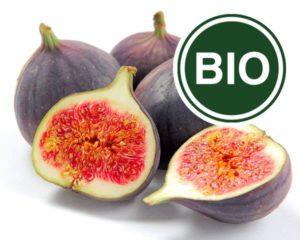 Fig Bio