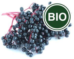 Owoc czarnego bzu Bio