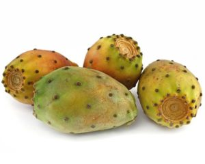 Prickly Pear/Indian Fig