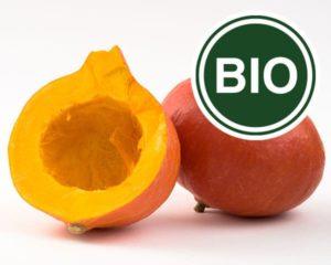 Pumpkin Bio