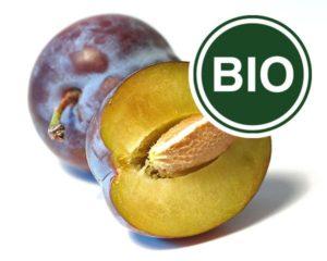Plum Bio