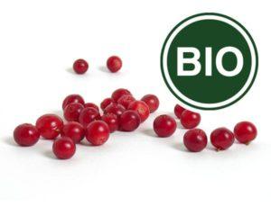 Preiselbeere Bio