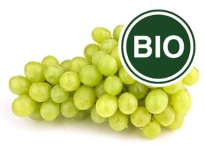 Winogrono białe Bio