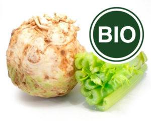 Celery Bio