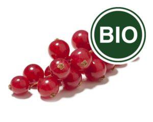 Redcurrant Bio