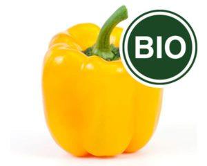 Paprika gelb Bio